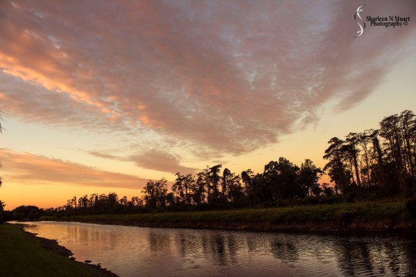 Outback on the Canal:  January 26, 2015 0172