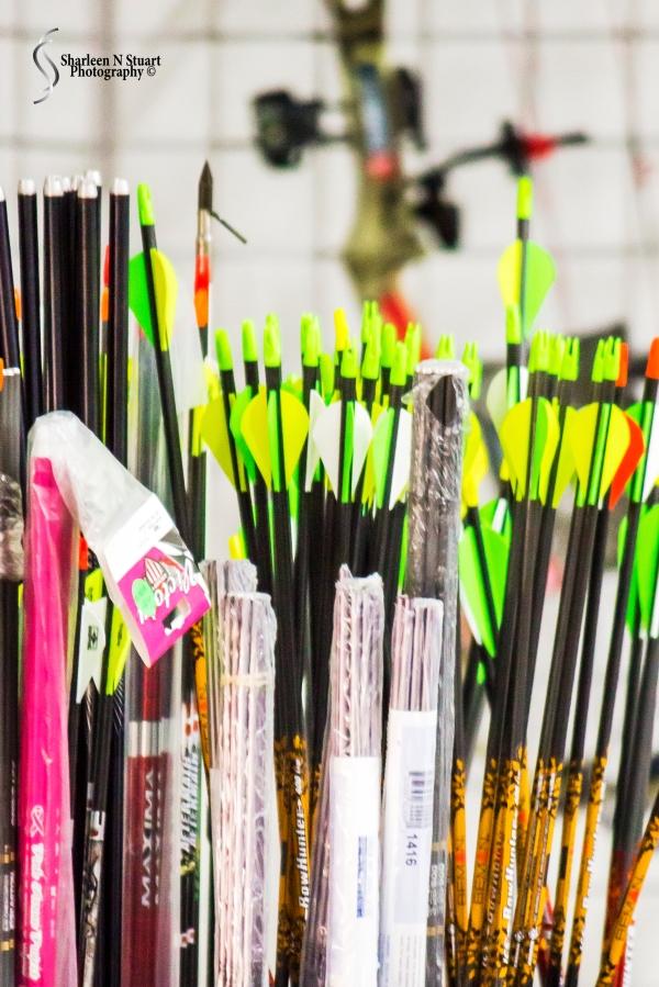 Palm Beach Archery:  January 9, 2015 8841