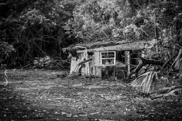 Abandoned: January 12, 2014: 9154