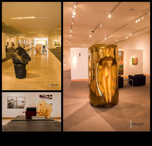 Boca Raton Museum of Art:  April 24, 2015 1077