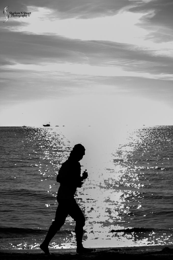 A beach day:  March 22, 2015 8233