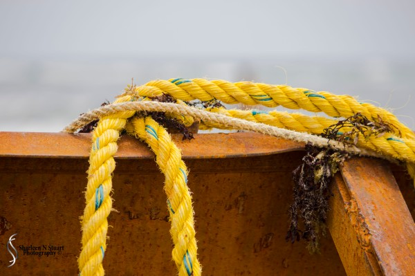Ropes attached to the boat, perhaps used to tie themselves in if weather and seas got really bad