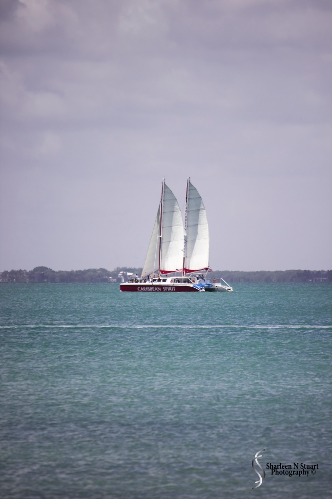 Sailing on the Bay of Biscayne.  I wish we were - it was really hot out there that day.