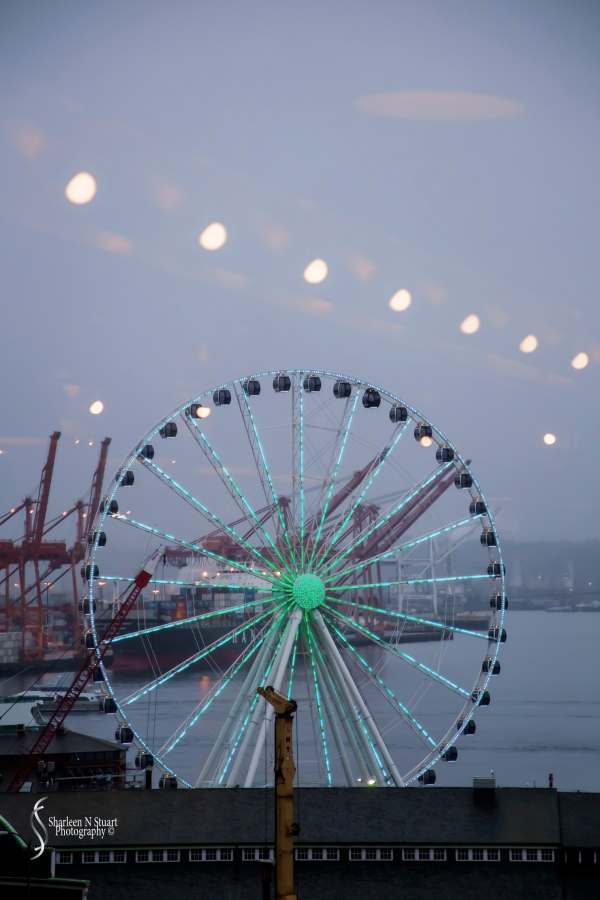 Ferris Wheel from Pike Place Market.
