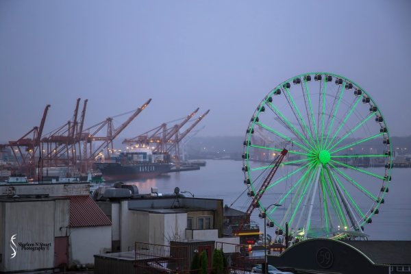 Cities in Color: Green: Seattle Ferris Wheel at Dusk.