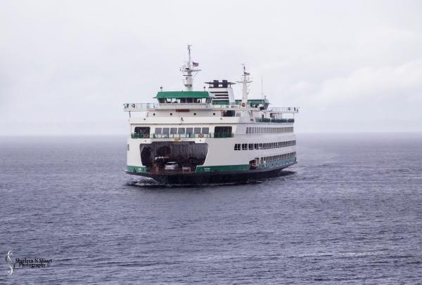 Bainbrigde Ferry