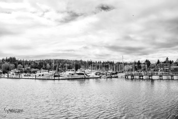 The Yatch harbor at Bainbridge Island