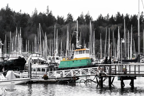 The Yatch harbor at Bainbridge Island