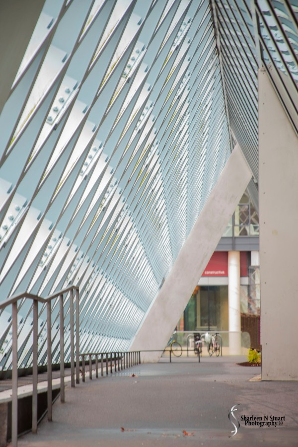 The Seattle City Library