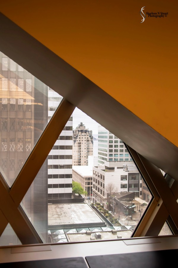 The Seattle City Library - looking out.