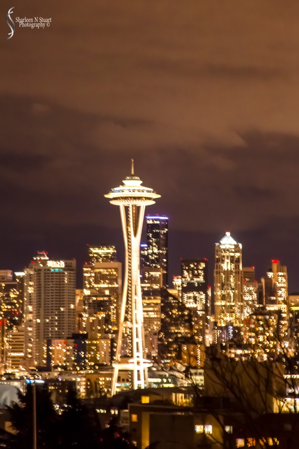 The Space Needle at night taken from the Freemont District area