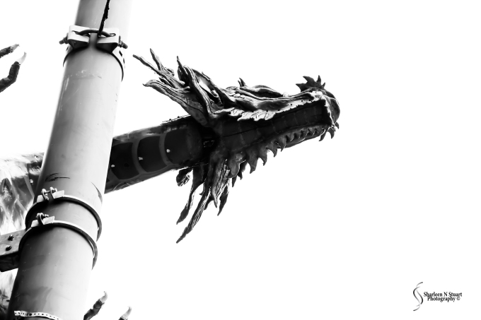 The dragons of Chinatown