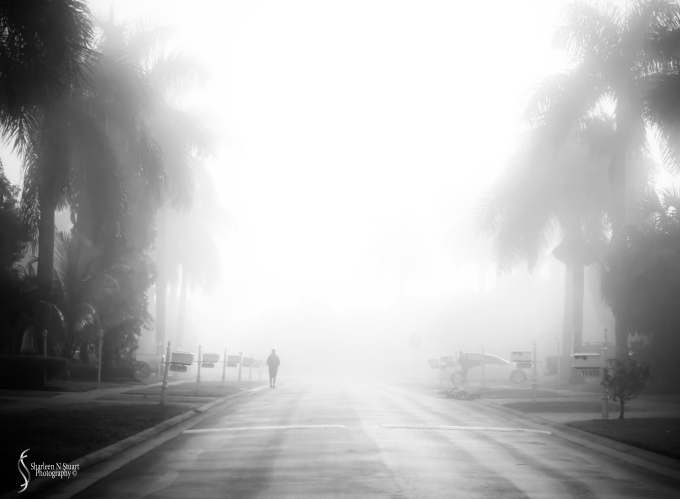 When I left home this morning the fog was so thick that I could not resist taking this photo.