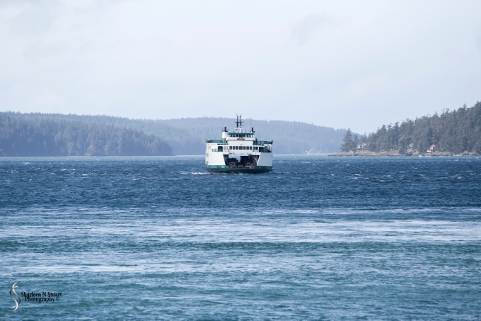 This is the first sign of moving traffic, a ferry traveling back from one of the islands.