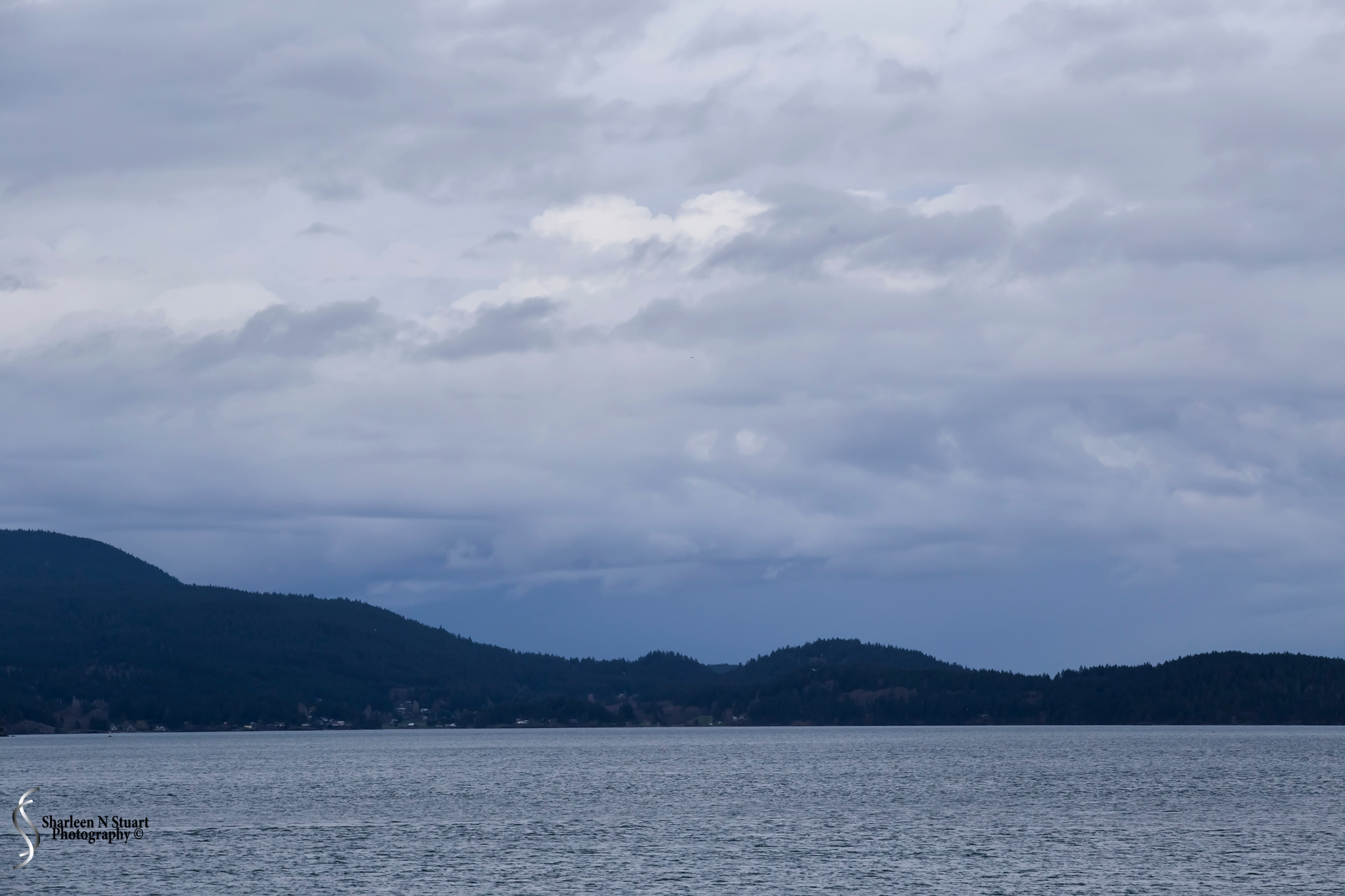It was with sadness that we left Friday Harbor. I think there was more to see but we did run out of time. Our day was good. A few drops of rain but nothing we could not deal with. Leaving Friday Harbor, the closing day is cloudy and overcast.