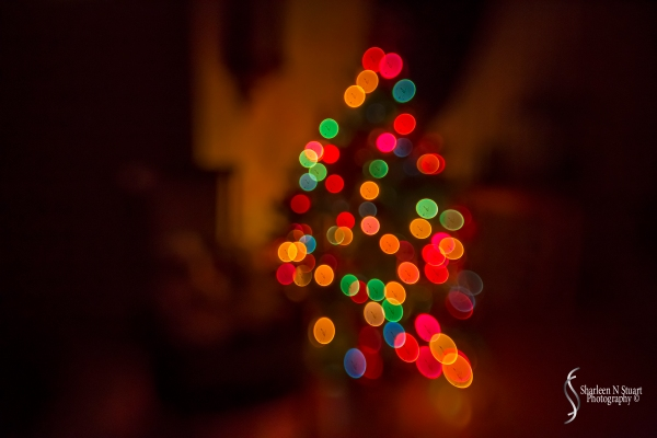 Christmas lights with the help of the lensbaby sweet 35