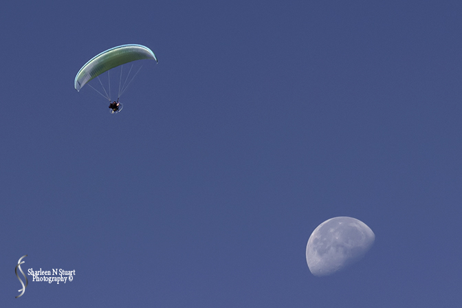 Paraglider and the moon
