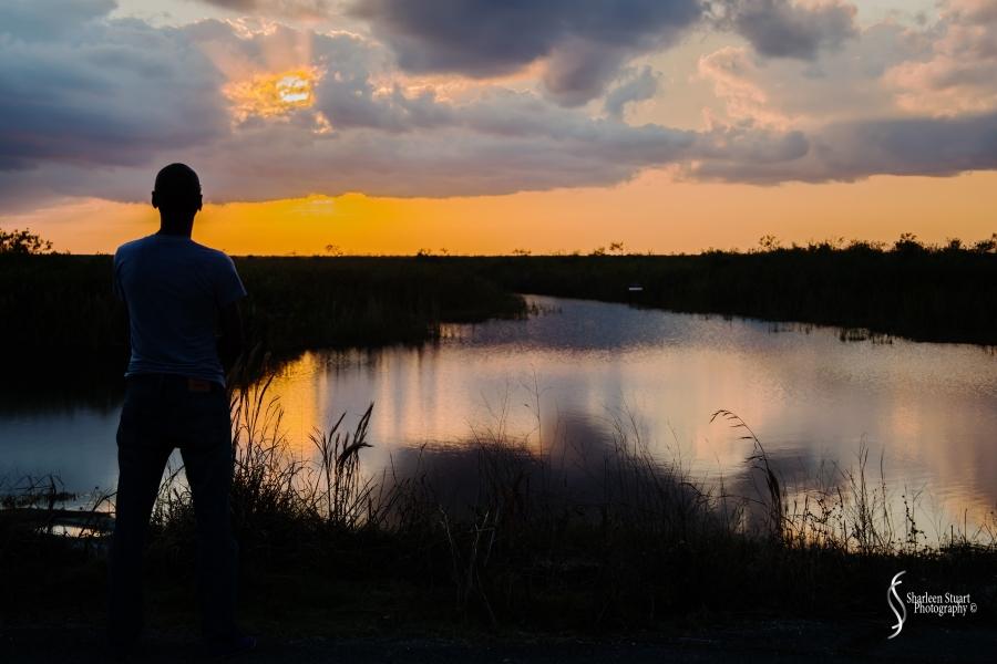 A.R.M Loxahatchee National Park: February 3, 2017: 7689