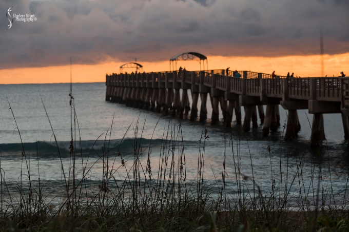 Lake Worth Pier/Sunrise: November 25, 2017: 7603