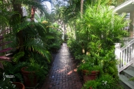 The pathway to the main house and breakfast area as well as the main pool.