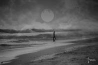 Week 49 - Song Title - Harvest Moon