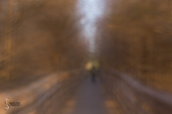 Deliberate blur of the walkway - Lensbaby double glass.