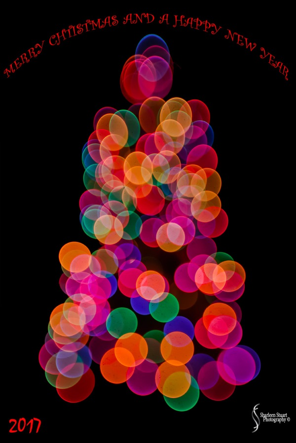 Christmas: December18, 2016 4981