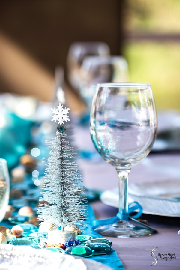 Christmas Table: December 25, 2017: 8359