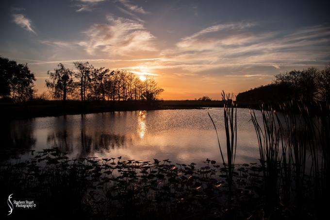 ARM Loxahatchee National Park: February 8, 2018: 0643