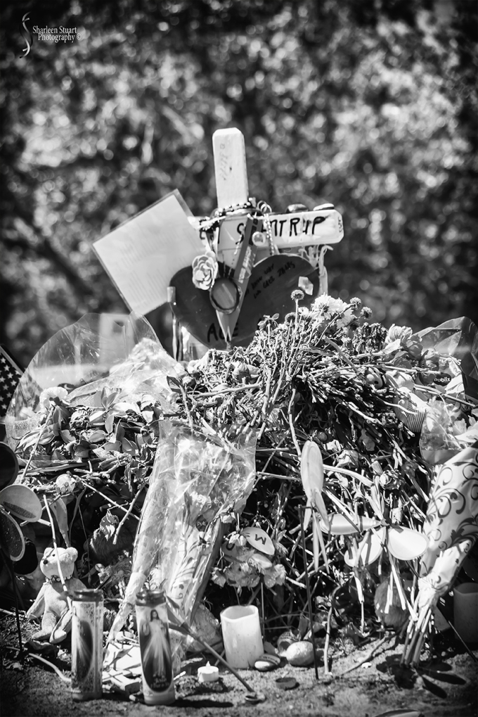 MSD High School Memorial:  March 9, 2018: 2148