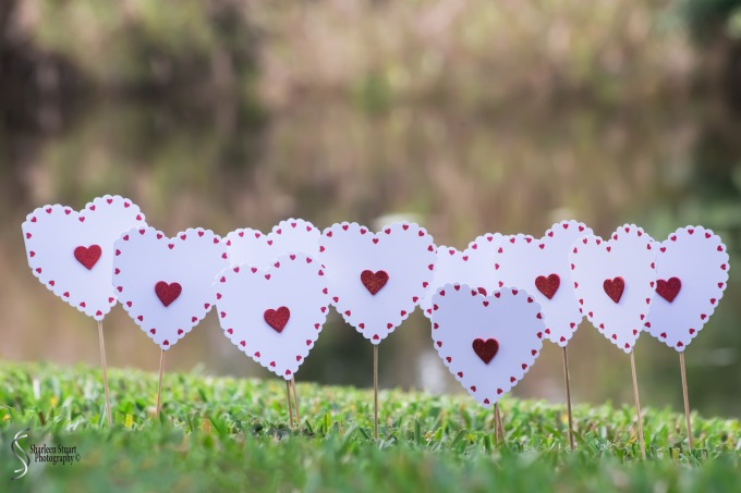 Paper Heart Project:  February2, 2019: 1266