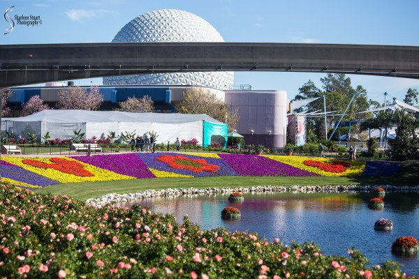Epcot 2019:  March 8, 2019: 2921