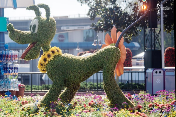 Epcot 2019:  March 8, 2019: 2925