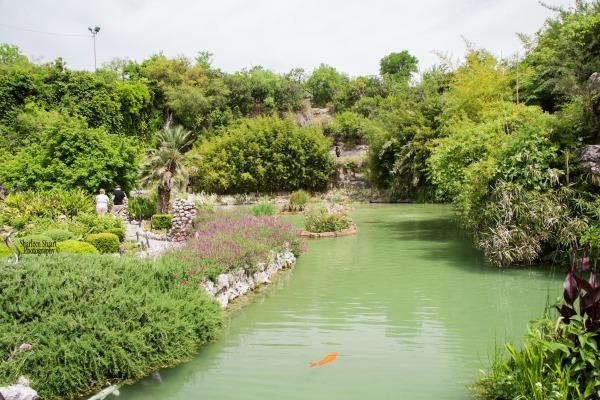 San Antonio:  April 9-13, 2019: 4164