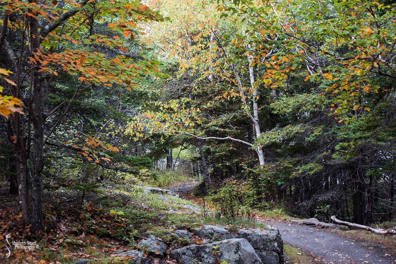 Maine, New Hampshire, Massachusetts:  September 2018: 0208