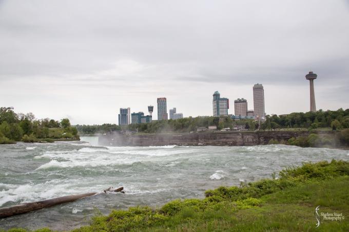 Niagara Falls and Rochester:  June 4-7, 2019: 5945