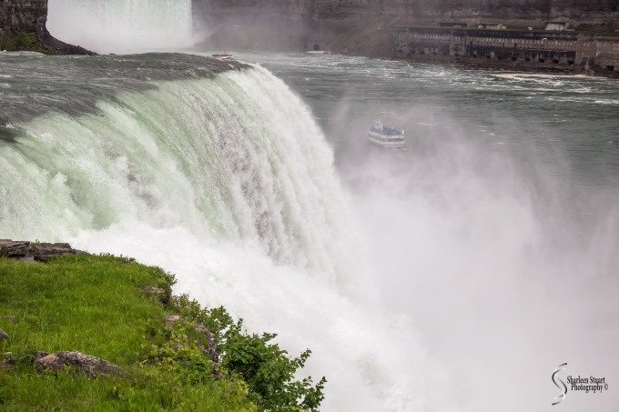 Niagara Falls and Rochester:  June 4-7, 2019: 5957