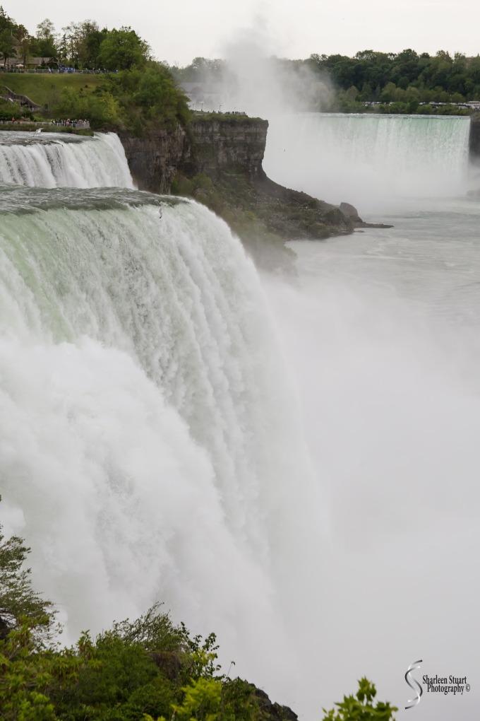 Niagara Falls and Rochester:  June 4-7, 2019: 5978