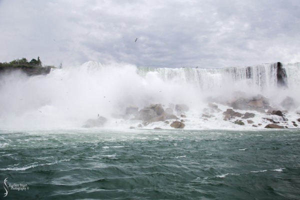 Niagara Falls and Rochester:  June 4-7, 2019: 6004