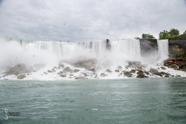 Niagara Falls and Rochester:  June 4-7, 2019: 6008