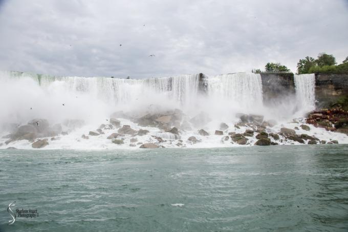 Niagara Falls and Rochester:  June 4-7, 2019: 6008
