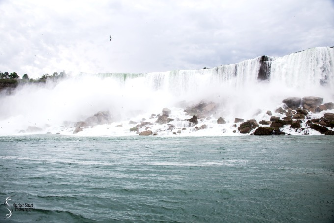 Niagara Falls and Rochester:  June 4-7, 2019: 6010