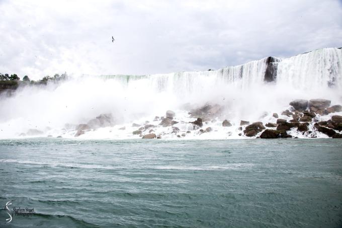 Niagara Falls and Rochester:  June 4-7, 2019: 6010