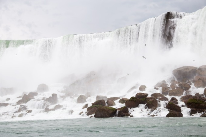 Niagara Falls and Rochester:  June 4-7, 2019: 6017