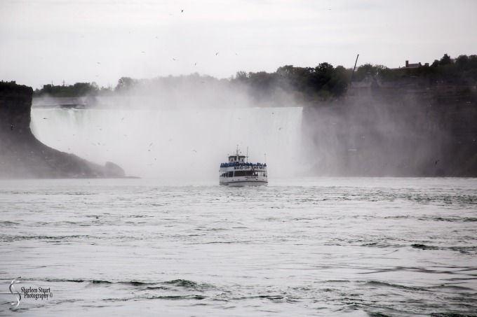 Niagara Falls and Rochester:  June 4-7, 2019: 6046