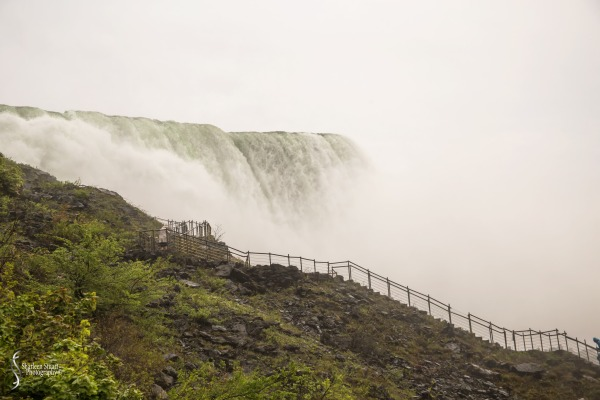 Niagara Falls and Rochester:  June 4-7, 2019: 6056