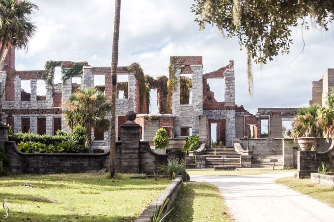 Cumberland Island trip Georgia:  October 11, 2019: 2269