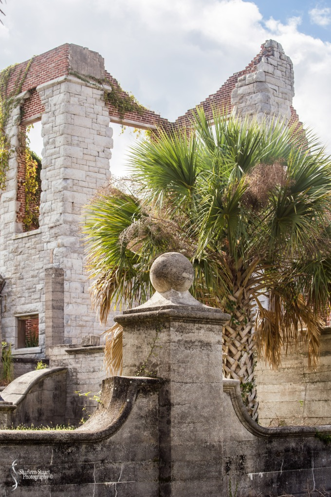 Cumberland Island trip Georgia:  October 11, 2019: 2274