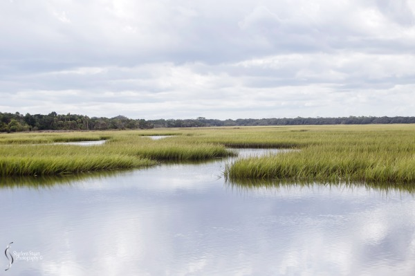 Cumberland Island trip Georgia:  October 11, 2019: 2300