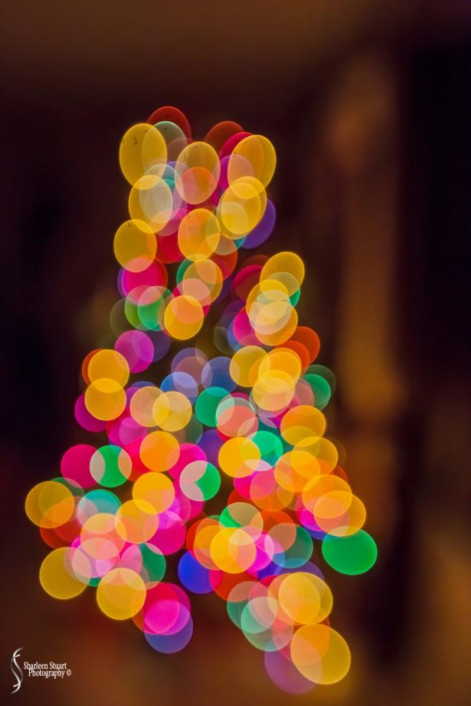 Christmas Bokeh:  Deccember 18, 2018:  0412